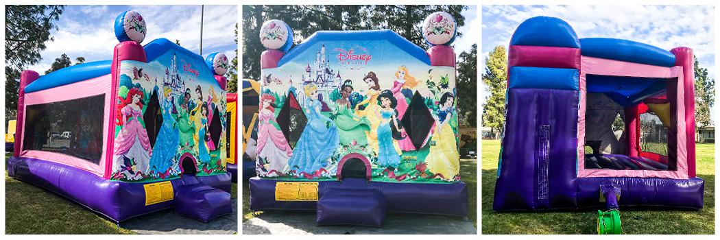 18x23 4 in 1 Disney Princess Jumper